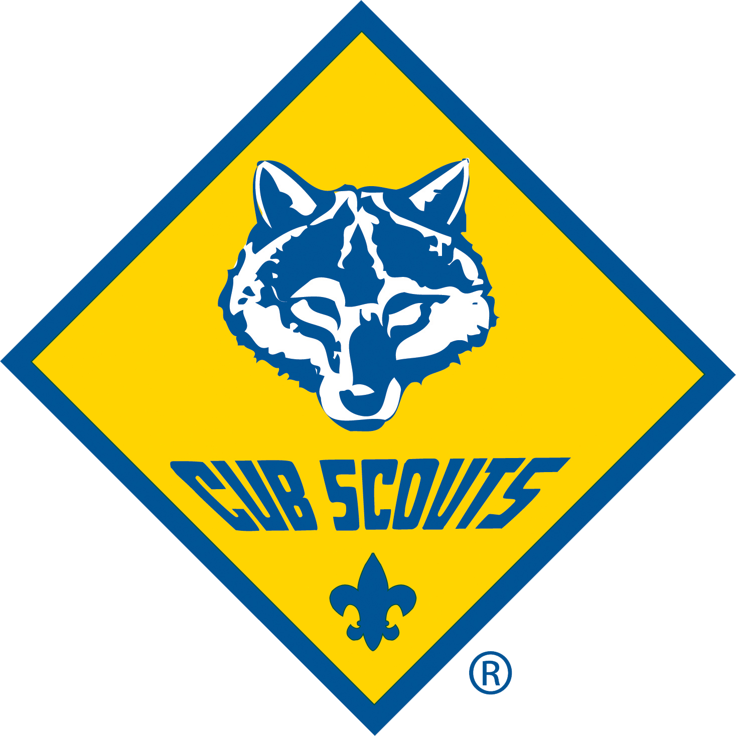 CubScout_4K.png