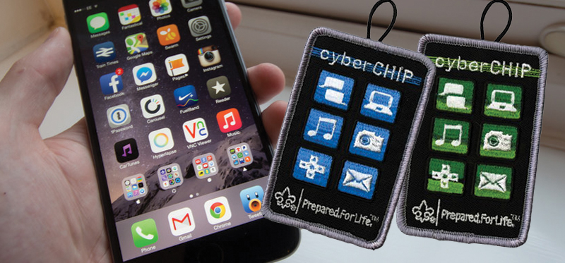 cyber-chip-2014.jpg