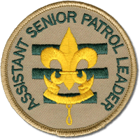 position-patch--aspl.png